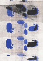 http://daniel-bischoff.net/files/gimgs/th-89_Riso 044 79 x 112mm.jpg
