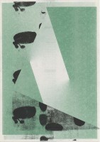 http://daniel-bischoff.net/files/gimgs/th-89_Riso 059 79 x 112mm.jpg