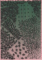 http://daniel-bischoff.net/files/gimgs/th-89_Riso 079 79 x 112mm.jpg
