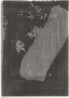 http://daniel-bischoff.net/files/gimgs/th-89_Riso 117 79 x 112mm.jpg